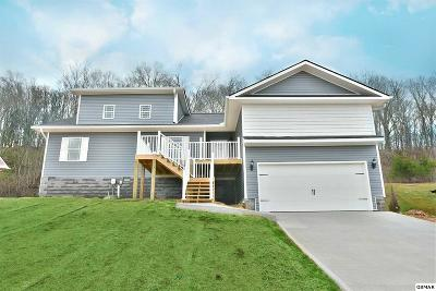 Kodak Single Family Home For Sale: 152 Clear Creek