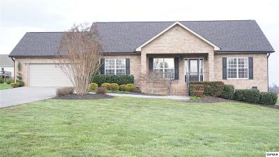 Sevierville Single Family Home For Sale: 2644 Covington Circle
