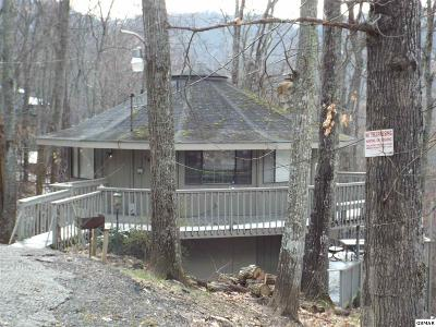 Sevier County Single Family Home For Sale: 1427 N Arbon Ln