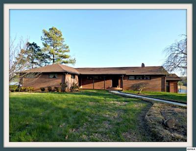 Dandridge Single Family Home For Sale: 1331 Highway 139
