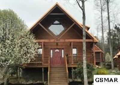 Gatlinburg Single Family Home For Sale: 161 White Oak Resort Way