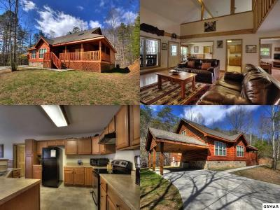 Sevier County Single Family Home For Sale: 4255 Powdermill Estates Road
