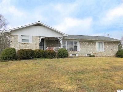 Hamblen County Single Family Home For Sale: 7360 Newberry Street