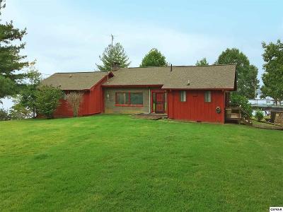 Dandridge Single Family Home For Sale: 1450 Bucks Point Way