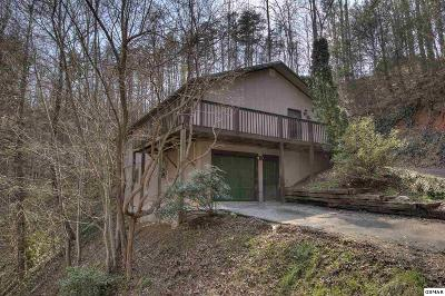 Sevier County Single Family Home For Sale: 547 Hawks Trl