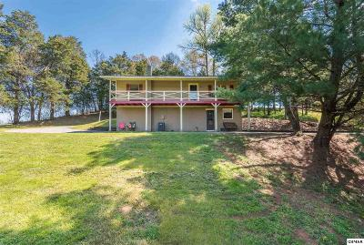 Sevierville Single Family Home For Sale: 1420 Twin Oaks Road