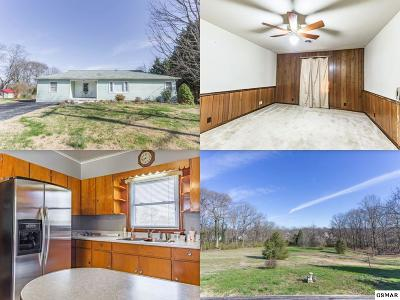 Knoxville Single Family Home For Sale: 540 Murray Drive