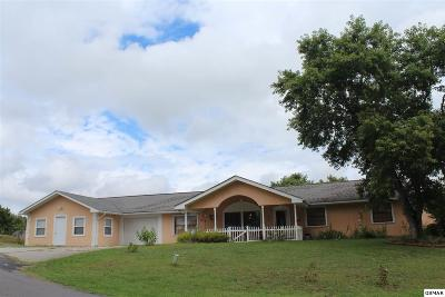 Sevierville Single Family Home For Sale: 1842 Allensville Ridge Road