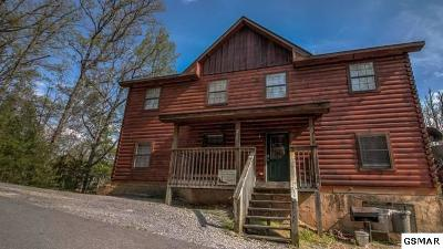 Sevier County Single Family Home For Sale: 1670 Kissing Way