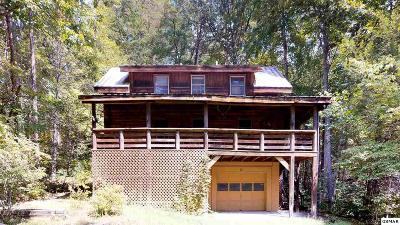 Cosby Single Family Home For Sale: 1224 Chavis Road