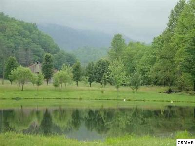 Sevier County Residential Lots & Land For Sale: 14.00 & 14.11 Mill Creek Road
