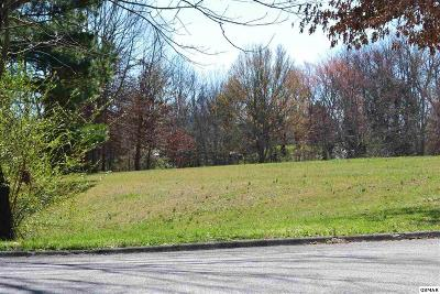 Sevier County Residential Lots & Land For Sale: Lot 29 White Oak Drive