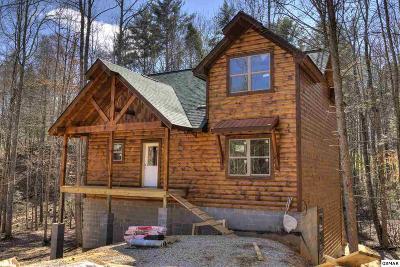 Single Family Home For Sale: 2313 Bogle Spring Loop