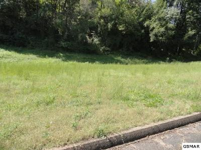 Sevier County Residential Lots & Land For Sale: 3135 Cherokee Valley Dr