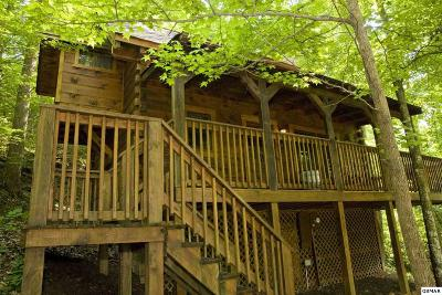 Pigeon Forge Single Family Home For Sale: 2919 Peregrine
