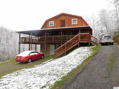 Single Family Home For Sale: 2924 Drue Fox Way