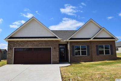 Single Family Home For Sale: 1227 Beaumont Ave
