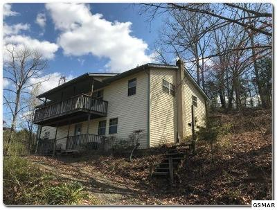 Sevierville Single Family Home For Sale: 1765 Rauhuff Rd