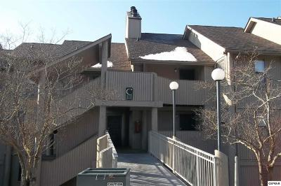 Sevier County Condo/Townhouse For Sale: 3710 Weber Rd C-203
