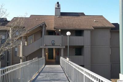 Gatlinburg Condo/Townhouse For Sale: 3710 Weber Rd. B203