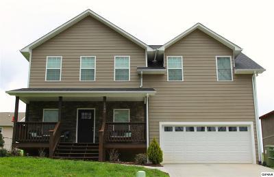 Sevierville Single Family Home For Sale: 1280 Lori Ellen Ct