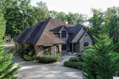 Sevierville Single Family Home For Sale: 203 Georgian Lane