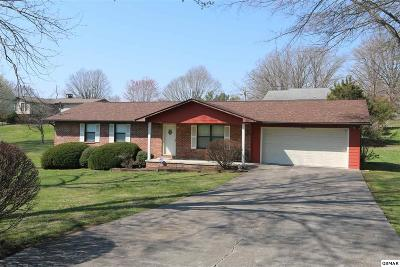 Sevierville Single Family Home For Sale: 209 Evergreen