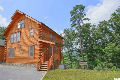 Sevierville Single Family Home For Sale: 2827 White Oak Ridge Ln