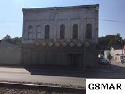 Cocke County Commercial For Sale: 223 E Main St