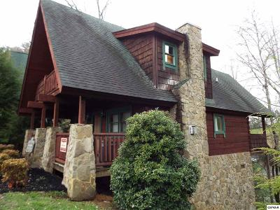 Sevier County Single Family Home For Sale: 1619 Jed Trail