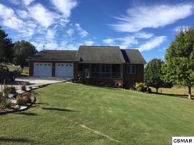 Single Family Home For Sale: 950 Gunter Corner Rd