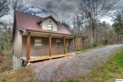 Sevierville Single Family Home For Sale: 2912 Pine Haven Dr