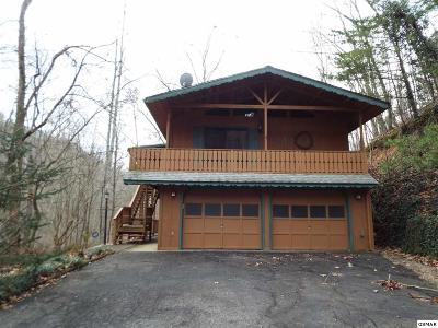 Sevierville Single Family Home For Sale: 2726 Mountain Blvd