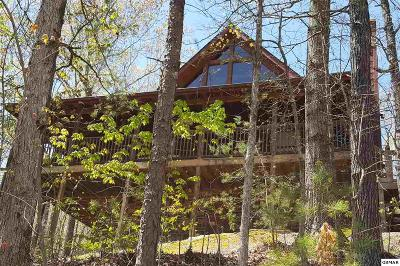 Sevierville Single Family Home For Sale: 2646 Whipoorwill Hill Way