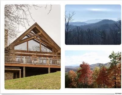 Sevierville Single Family Home For Sale: 3309 Lonesome Pine Way