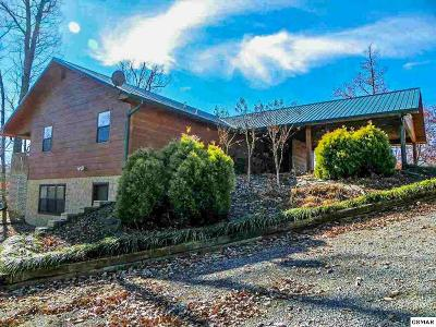 Sevierville Single Family Home For Sale: 3760 Ivy Way