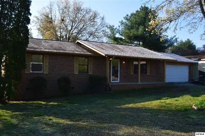 Seymour Single Family Home For Sale: 415/417 Boyds Creek Hwy