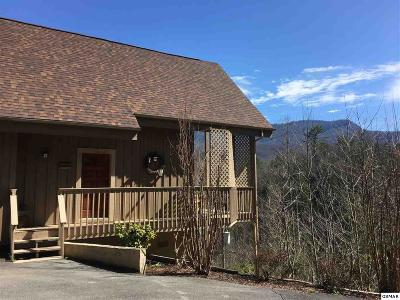 Gatlinburg Single Family Home For Sale: 219 Player Lane