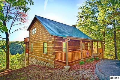Sevierville Single Family Home For Sale: 814 Ski View Ln
