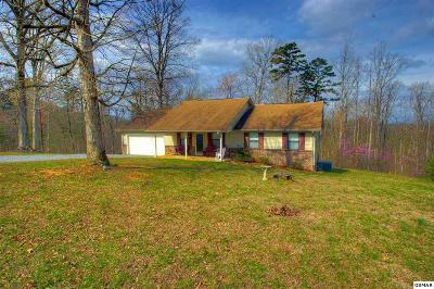 Sevier County Single Family Home For Sale: 124 Burning Oaks Dr.