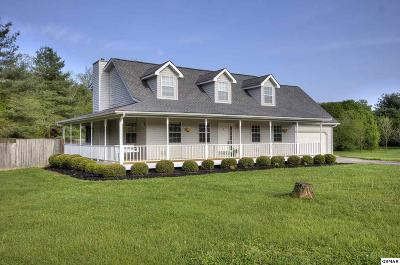 Sevierville Single Family Home For Sale: 954 Belle Meadows Blvd