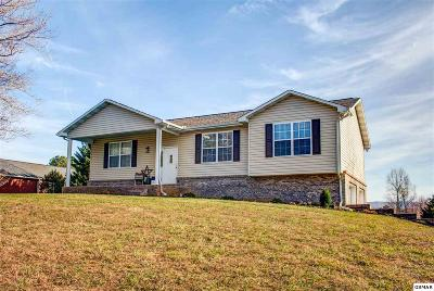 Seymour Single Family Home For Sale: 729 Water Oak Dr