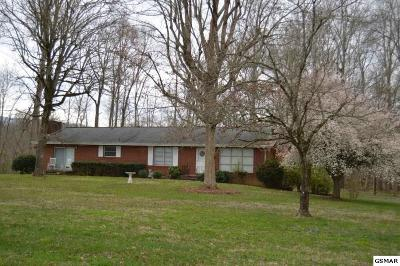 Seymour Single Family Home For Sale: 309 Chilhowee Academy