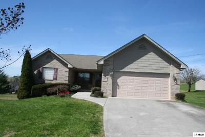 Sevierville Single Family Home For Sale: 1415 Little Kaycee Dr