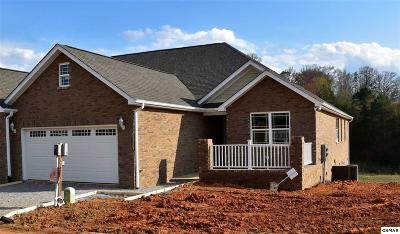 Sevierville Condo/Townhouse For Sale: 1919 Canyon Rd