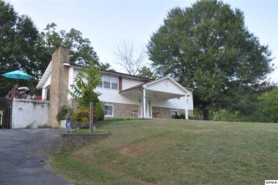 Sevierville Single Family Home For Sale: 2002 Waldens Creek Rd