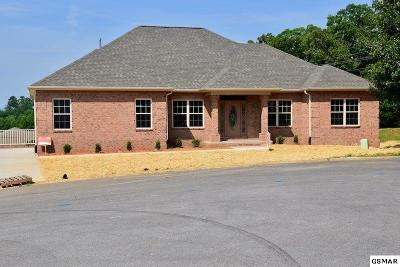 Sevierville Single Family Home For Sale: 1825 Placid Dr