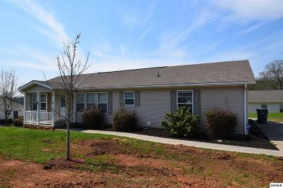 Dandridge Single Family Home For Sale: 1015 Milldale Square Rd