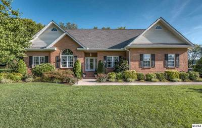 Sevierville Single Family Home For Sale: 1111 South Fork Drive