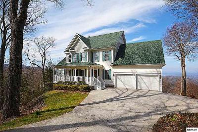 Gatlinburg Single Family Home For Sale: 2429 Park Line Drive